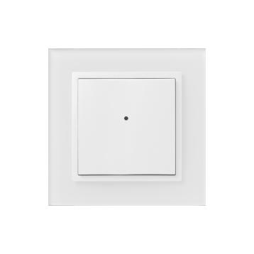 2-бутонен контролер WSB3-20